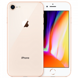 iPhone 8  256Gb New